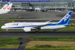 Chofu Spotter Ariaさんが、羽田空港で撮影した全日空 787-8 Dreamlinerの航空フォト(飛行機 写真・画像)