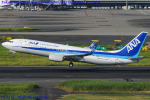 Chofu Spotter Ariaさんが、羽田空港で撮影した全日空 737-8ALの航空フォト(飛行機 写真・画像)