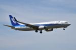 turenoアカクロさんが、高松空港で撮影した全日空 737-881の航空フォト(飛行機 写真・画像)