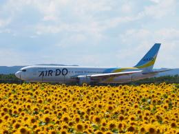 hirohirokinさんが、女満別空港で撮影したAIR DO 767-33A/ERの航空フォト(飛行機 写真・画像)