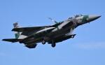 青い翼に鎧武者マークの!さんが、小松空港で撮影した航空自衛隊 F-15DJ Eagleの航空フォト(飛行機 写真・画像)