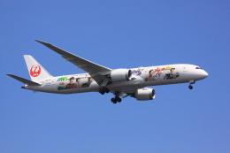 けいとパパさんが、羽田空港で撮影した日本航空 787-9の航空フォト(飛行機 写真・画像)