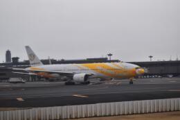 うめたろうさんが、シンガポール・チャンギ国際空港で撮影したノックスクート 777-212/ERの航空フォト(飛行機 写真・画像)