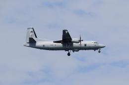 ★azusa★さんが、シンガポール・チャンギ国際空港で撮影したシンガポール空軍 50MPA Enforcer Mk.2の航空フォト(飛行機 写真・画像)