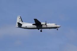 ★azusa★さんが、シンガポール・チャンギ国際空港で撮影したシンガポール空軍 50 UTAの航空フォト(飛行機 写真・画像)