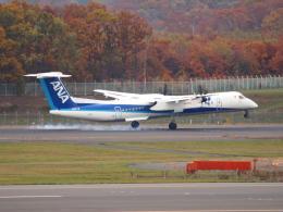むらさめさんが、新千歳空港で撮影したANAウイングス DHC-8-402Q Dash 8の航空フォト(飛行機 写真・画像)