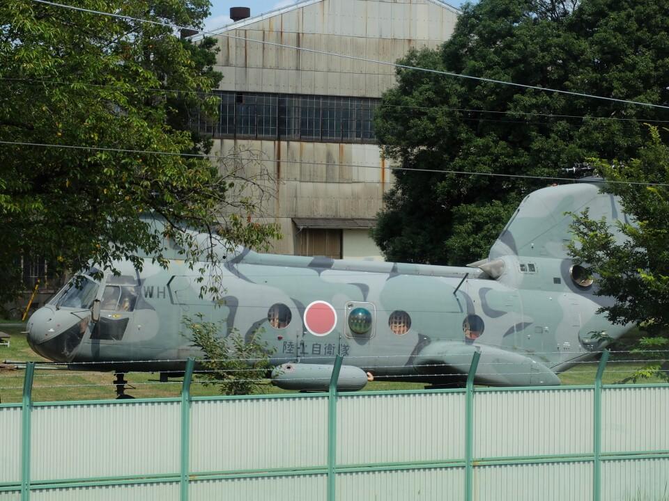 Smyth Newmanさんの陸上自衛隊 Kawasaki V-107 (51737) 航空フォト