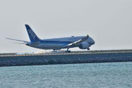 うめたろうさんが、那覇空港で撮影した全日空 787-8 Dreamlinerの航空フォト(飛行機 写真・画像)