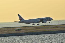 うめたろうさんが、那覇空港で撮影した日本航空 777-246の航空フォト(飛行機 写真・画像)