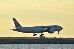 うめたろうさんが、那覇空港で撮影した日本航空 777-289の航空フォト(飛行機 写真・画像)