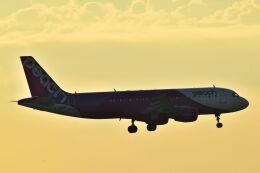 うめたろうさんが、那覇空港で撮影したピーチ A320-214の航空フォト(飛行機 写真・画像)