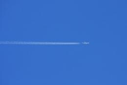 Hiro-hiroさんが、羽田空港で撮影したキャセイパシフィック航空 A350-1041の航空フォト(飛行機 写真・画像)