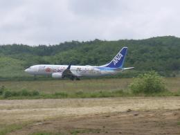 Mitsuki1211さんが、能登空港で撮影した全日空 737-881の航空フォト(飛行機 写真・画像)