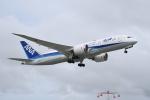 なないろさんが、宮古空港で撮影した全日空 787-8 Dreamlinerの航空フォト(飛行機 写真・画像)