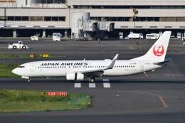航空フォト:JA301J 日本航空 737-800
