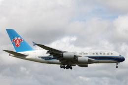 小牛田薫さんが、成田国際空港で撮影した中国南方航空 A380-841の航空フォト(飛行機 写真・画像)