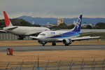 ふじいあきらさんが、伊丹空港で撮影したエアーネクスト 737-5Y0の航空フォト(写真)