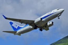 じーのさんさんが、八丈島空港で撮影した全日空 737-781の航空フォト(飛行機 写真・画像)
