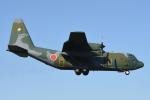 Eishin.Yさんが、入間飛行場で撮影した航空自衛隊 C-130H Herculesの航空フォト(飛行機 写真・画像)