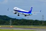 くれないさんが、高松空港で撮影した全日空 A321-211の航空フォト(飛行機 写真・画像)