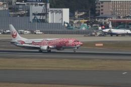344さんが、福岡空港で撮影した日本トランスオーシャン航空 737-446の航空フォト(飛行機 写真・画像)