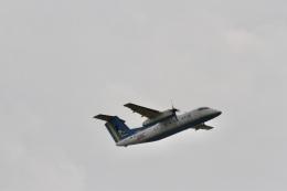 344さんが、那覇空港で撮影した琉球エアーコミューター DHC-8-103Q Dash 8の航空フォト(飛行機 写真・画像)