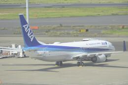 fukucyanさんが、羽田空港で撮影した全日空 737-881の航空フォト(飛行機 写真・画像)