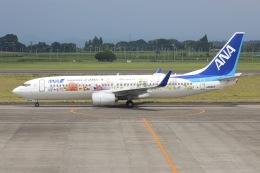 sky-spotterさんが、鹿児島空港で撮影した全日空 737-881の航空フォト(飛行機 写真・画像)