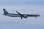 kumagorouさんが、仙台空港で撮影した全日空 A321-211の航空フォト(飛行機 写真・画像)