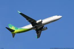 n-sakaさんが、成田国際空港で撮影した春秋航空日本 737-81Dの航空フォト(飛行機 写真・画像)