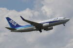 プルシアンブルーさんが、仙台空港で撮影した全日空 737-781の航空フォト(飛行機 写真・画像)
