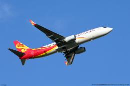 n-sakaさんが、成田国際空港で撮影した海南航空 737-84Pの航空フォト(飛行機 写真・画像)
