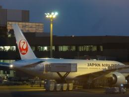 sunrise21さんが、成田国際空港で撮影した日本航空 777-246/ERの航空フォト(飛行機 写真・画像)