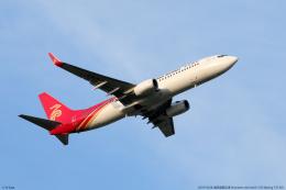 n-sakaさんが、成田国際空港で撮影した深圳航空 737-87Lの航空フォト(飛行機 写真・画像)