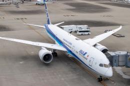 JA1118Dさんが、羽田空港で撮影した全日空 787-9の航空フォト(飛行機 写真・画像)