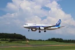 くろネコさんが、庄内空港で撮影した全日空 A320-271Nの航空フォト(飛行機 写真・画像)
