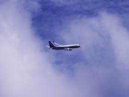はち丸さんが、大館能代空港で撮影した全日空 737-881の航空フォト(飛行機 写真・画像)