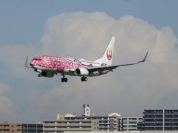 Blue779Aさんが、福岡空港で撮影した日本トランスオーシャン航空 737-8Q3の航空フォト(飛行機 写真・画像)