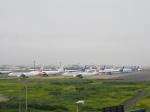 ガスパールさんが、羽田空港で撮影した日本航空 767-346/ERの航空フォト(飛行機 写真・画像)