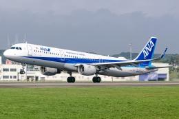 Ariesさんが、函館空港で撮影した全日空 A321-211の航空フォト(飛行機 写真・画像)