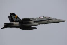 Talon.Kさんが、厚木飛行場で撮影したアメリカ海兵隊 F/A-18D Hornetの航空フォト(飛行機 写真・画像)