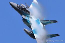かずかずさんが、茨城空港で撮影した航空自衛隊 F-15DJ Eagleの航空フォト(飛行機 写真・画像)