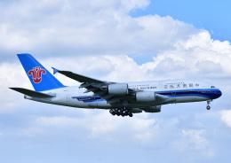 じーく。さんが、成田国際空港で撮影した中国南方航空 A380-841の航空フォト(飛行機 写真・画像)