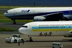 rjnsphotoclub-No.07さんが、羽田空港で撮影したAIR DO 767-33A/ERの航空フォト(飛行機 写真・画像)