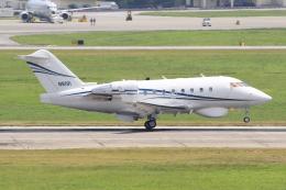キイロイトリさんが、嘉手納飛行場で撮影したTENAX AEROSPACE LLC CL-600-2B16 Challenger 604の航空フォト(飛行機 写真・画像)