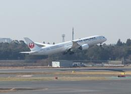 銀苺さんが、成田国際空港で撮影した日本航空 787-9の航空フォト(飛行機 写真・画像)