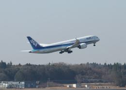 銀苺さんが、成田国際空港で撮影した全日空 787-9の航空フォト(飛行機 写真・画像)