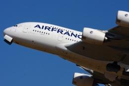 Hiro-hiroさんが、成田国際空港で撮影したエールフランス航空 A380-861の航空フォト(飛行機 写真・画像)