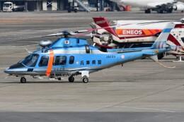 ほてるやんきーさんが、伊丹空港で撮影した兵庫県警察 A109E Powerの航空フォト(飛行機 写真・画像)