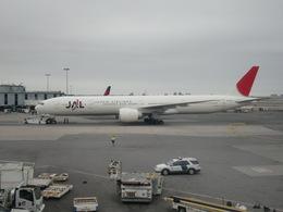 Quihuboさんが、ジョン・F・ケネディ国際空港で撮影した日本航空 777-346/ERの航空フォト(飛行機 写真・画像)